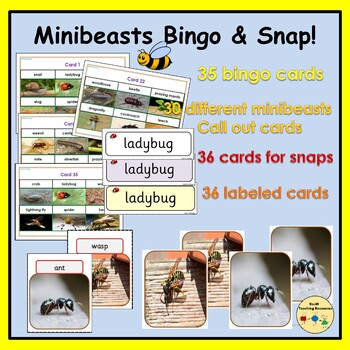 Minibeasts: Games - Bingo, Snap, Matching Game - Picture Cards, Call Out Cards