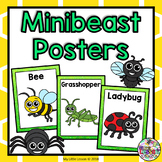 Minibeasts, Insects, Bugs Posters