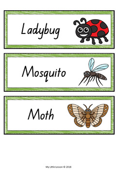 Minibeasts, Insects, Bugs Word Cards QLD Beginners Font