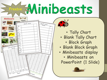 Minibeasts Tally Chart and Block Graph Project and Activity Sheets