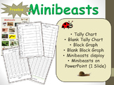Count and Graph Minibeasts Tally Chart, Block Graph Project and Activity Sheets