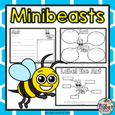 Minibeasts, Insects, Bugs: Worksheets, Diagram