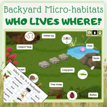 Backyard Bugs Micro-habitats Activity
