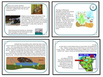 Minibooks Wetland Habitats Leveled for 910 and 770 Lexile Bands