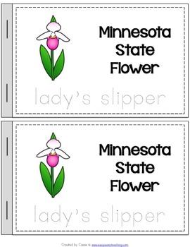 Minnesota State Symbols Notebook