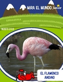 Mira el Mundo JUNIOR Non Fiction MAGAZINE in Spanish for Elementary