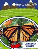 Mira el Mundo JUNIOR Octubre 2018 Spanish Non Fiction Magazine Monarch Butterfly