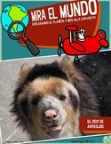Mira el Mundo Spanish Non-Fiction Magazine 4 MONTH Subscription for Kids