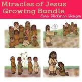 Miracles of Jesus 11 set Bundle