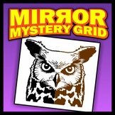 Mirror Mystery Grid Drawing - Owl