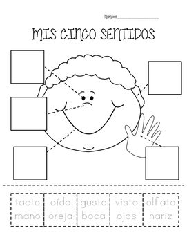 Mis Cinco Sentidos- My Five Senses practice in Spanish