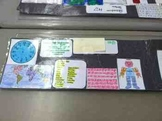 Misc: Student Resources Name Tags: Grades 3-5