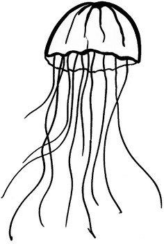 Miscellaneous Invertebrate Organisms Clip Art