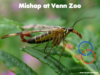Mishap at Venn Zoo (mirror and rotational symmetry $100 Classroom Challenge)