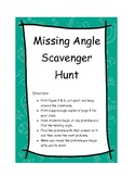 Missing Angle Scavenger Hunt