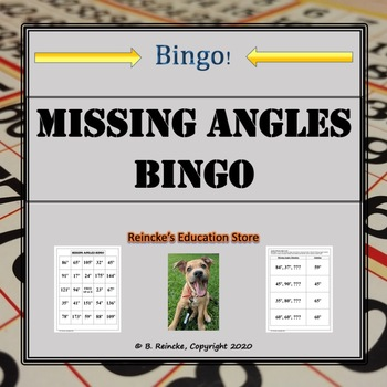 Missing Angles Bingo (30 pre-made cards!)
