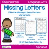 Missing Letters Worksheets