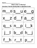 Missing Letters Worksheet Activity