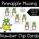 Missing Numbers 1-100 Pineapple Clip Cards