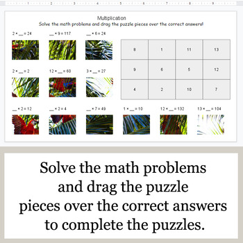 Missing Numbers in Multiplication - Google Slides - Jungle Animal Puzzles