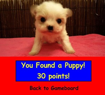 Find the Puppy Game Template for SMARTBOARD