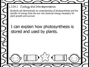Mississippi CCRS Science Standards - Grade 5 _ Complete Set