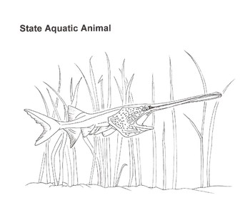 Missouri A to Z Nature & Environment Coloring Book (pfd file)