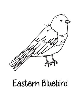 Missouri State Coloring Pages