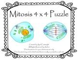 Mitosis 4x4 Puzzle