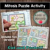 Mitosis Activity