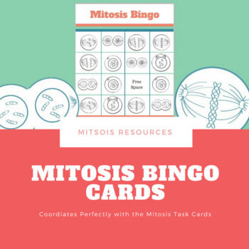Mitosis Bingo Cards