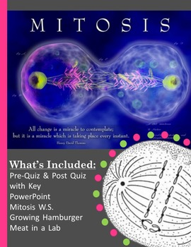 Mitosis Bundle