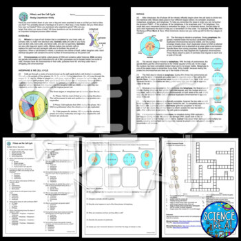 Mitosis Cell Cycle Reading Comprehension & Interactive Notebook Activity