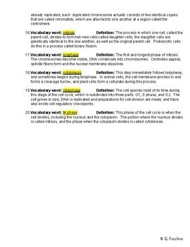 Mitosis, Cell Division, Cell Cycle Review Worksheet w/Answer Key