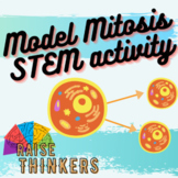 Mitosis Cell Division Model activity for middle and high school
