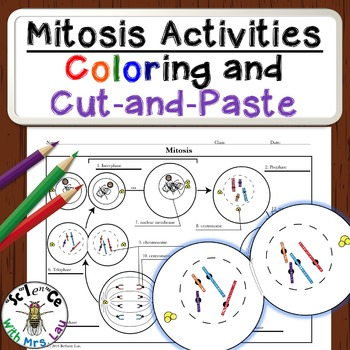 Mitosis Diagram Activities
