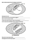Mitosis Diagram Worksheet - Guided Inquiry-Based
