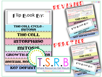 Mitosis Flip Book (Revision and Task) (Edexcel Biology B Matched)