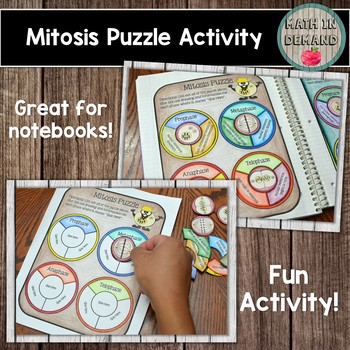 Mitosis Interactive Notebook Puzzle Activity