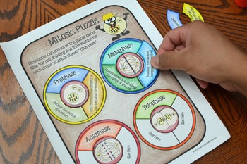 Mitosis Interactive Notebook Puzzle Activity by Math in ...
