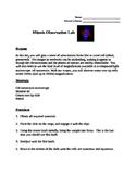 Mitosis Lab