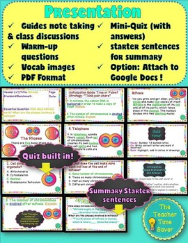 Mitosis Lesson: Cell Unit (presentation, notes, and activity)