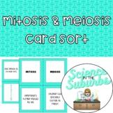 Mitosis & Meiosis Card Sort