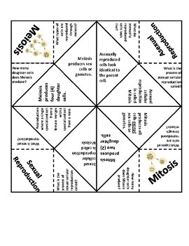 graphic relating to Printable Fortune Teller named Mitosis Meiosis Fortune Teller/ Cootie Catcher with Quiz!
