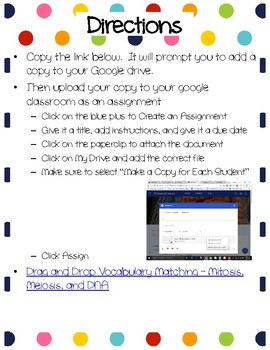 Mitosis, Meiosis, and DNA Drag-n-Drop Vocab for Google Classroom