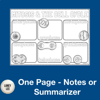 Mitosis One Pager