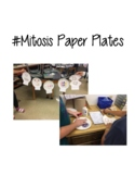 Mitosis Paper Plates Project