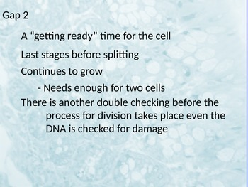 Mitosis Powerpoint