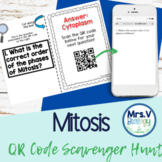 Mitosis QR Code Scavenger Hunt Activity