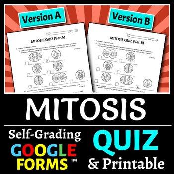 Mitosis Quiz - Two Versions {Editable}